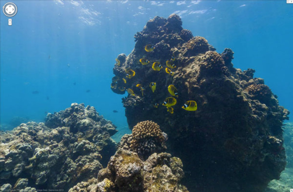 Google Street View BecomesOcean View With Underwater Maps Of - Google ocean